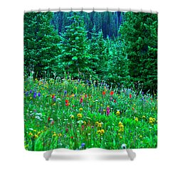 Shrine Pass Wildflowers Shower Curtain