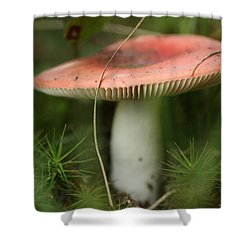 Shroomery Shower Curtain