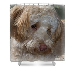 Shy Doodle Shower Curtain