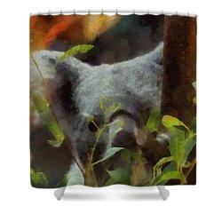 Shy Koala Shower Curtain by Dan Sproul