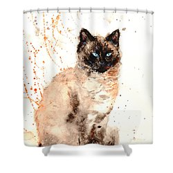Siamese Beauty Shower Curtain