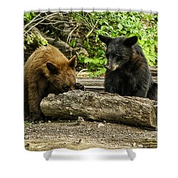 Sibling Lunch Shower Curtain