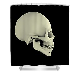 Side View Of Human Skull Shower Curtain by Stocktrek Images