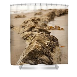 Side Winding Shower Curtain by Amanda Barcon
