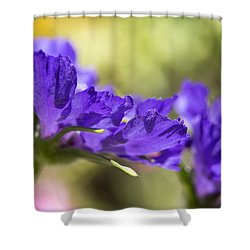 Sideview Shower Curtain by Caitlyn  Grasso