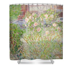 Sidewalk Flowers In Chicago Shower Curtain