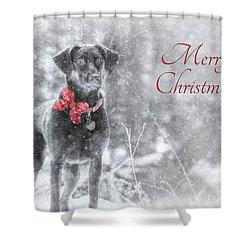 Sienna - Merry Christmas Shower Curtain by Lori Deiter