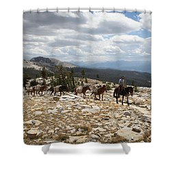 Sierra Trail Shower Curtain by Diane Bohna