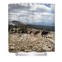 Sierra Trail Shower Curtain