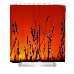 Sign Of The Time Shower Curtain