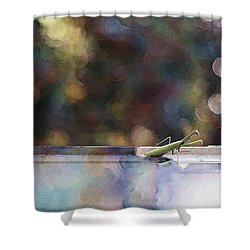 Signs Shower Curtain by Kathy Bassett