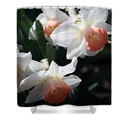 Shower Curtain featuring the photograph Signs Of Spring by Kay Novy