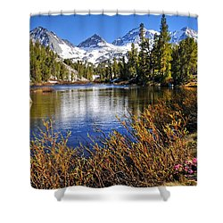 Signs Of Spring Shower Curtain by Lynn Bauer