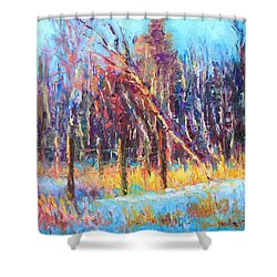Signs Of Spring - Trees And Snow Kissed By Spring Light Shower Curtain by Talya Johnson
