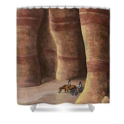 Signs Of The Past Shower Curtain