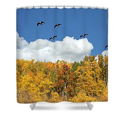 Signs Of The Season Shower Curtain