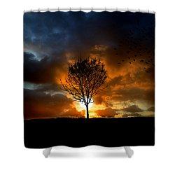 Silence Shower Curtain by Lj Lambert