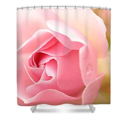 Silence Of The Heart Shower Curtain