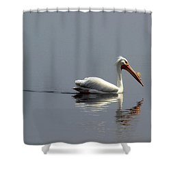 Silent And Reflective Shower Curtain by Thomas Young