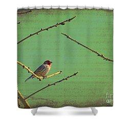 Silent Song Shower Curtain by Meghan at FireBonnet Art
