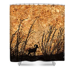 Silhouette Bighorn Sheep Shower Curtain