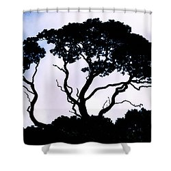 Shower Curtain featuring the photograph Silhouette by Jim Thompson