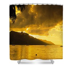 Silhouette Of Palm Trees At Dusk, Cooks Shower Curtain by Panoramic Images