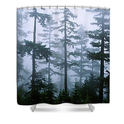 Silhouette Of Trees With Fog Shower Curtain