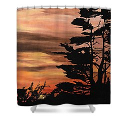 Shower Curtain featuring the painting Silhouette Sunset by Mary Ellen Anderson