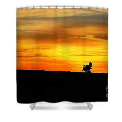 Silhouette Wild Turkey Shower Curtain by Dan Friend