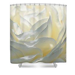 Silk Cream Floral Shower Curtain by Elaine Manley