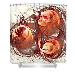 Silk Labyrinth Shower Curtain by Anastasiya Malakhova