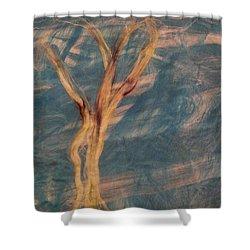 Shower Curtain featuring the digital art Silk Trees by Aliceann Carlton