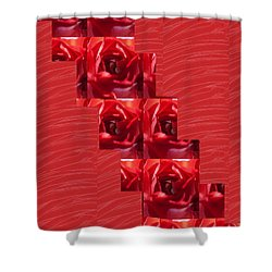 Shower Curtain featuring the photograph Silken Red Sparkles Redrose Across by Navin Joshi