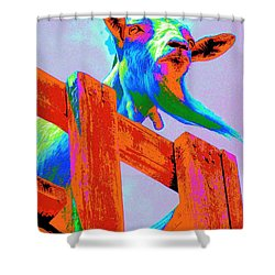 Shower Curtain featuring the photograph Silly Billy In Many Colors Photo Impressionism by Annie Zeno