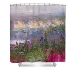 Silver And Gold - Matanuska Canyon Cliffs River Fireweed Shower Curtain