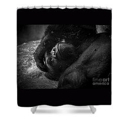Deep In Thought Of Freer Times Shower Curtain