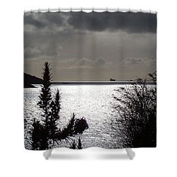 Silver Shower Curtain by Richard Brookes