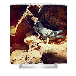 Silver Birds Shower Curtain