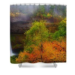 Silver Falls Pano Shower Curtain by Darren  White