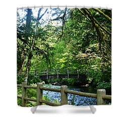 Shower Curtain featuring the photograph Silver Falls Stream by VLee Watson