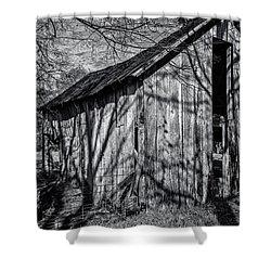 Silver Grey Shower Curtain by CJ Schmit