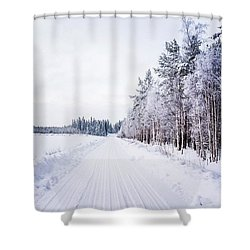 Silver Scene Shower Curtain