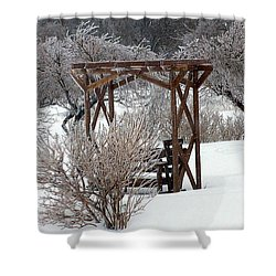 Silver Thaw Shower Curtain