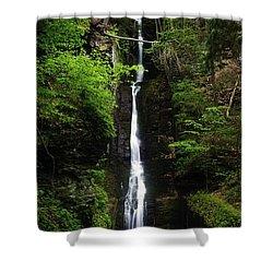 Shower Curtain featuring the photograph Silverthread Falls by Debra Fedchin