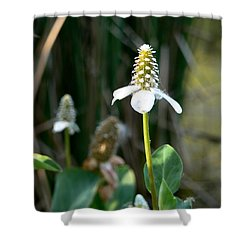 Simple Flower Shower Curtain by Laurel Powell