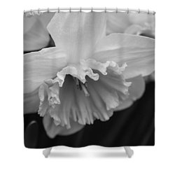 Shower Curtain featuring the photograph Simplicity by Arlene Carmel