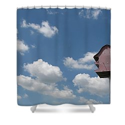 Shower Curtain featuring the photograph Simplicity by Beth Vincent
