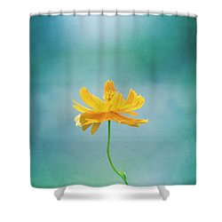Simplicity Shower Curtain by Kim Hojnacki