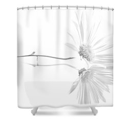Simplistic Reflection... Shower Curtain by Tammy Schneider
